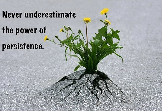 The power of persistence…